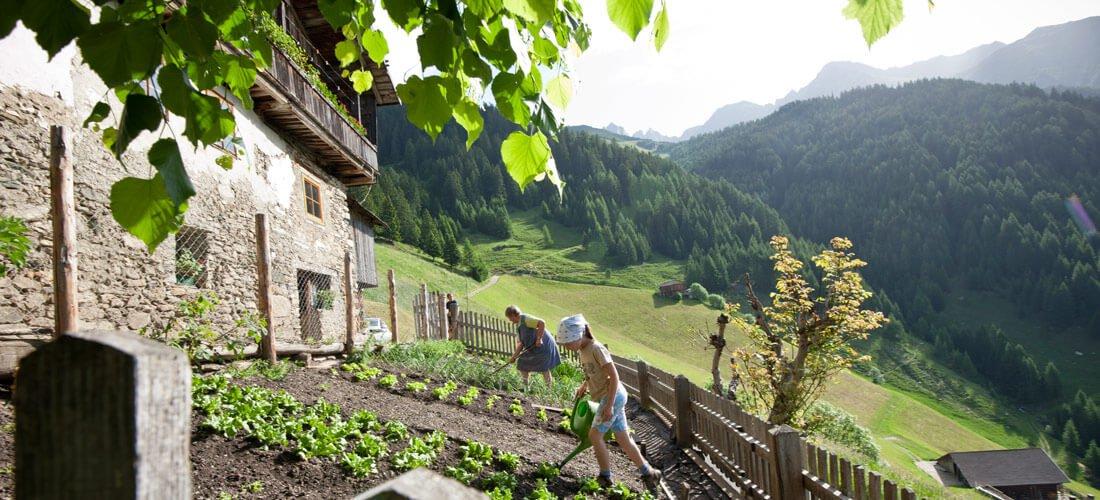 Escursioni guidate & Consigli per le escursioni: la montagna chiama!